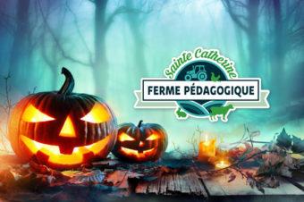 Halloween à la ferme : venez déguisés si vous le souhaitez !